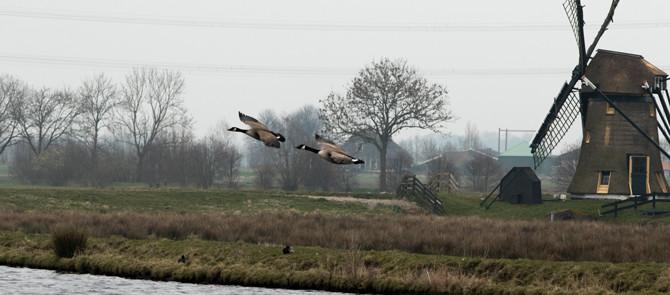 Fotoblog  Jan-Willem van Rijs